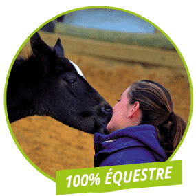 100-equestre-baniere
