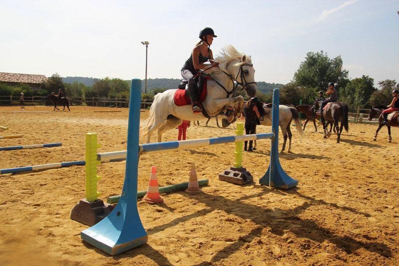 stage équitation Hérault
