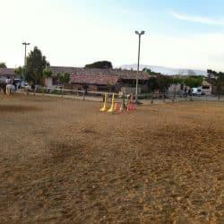 carrière de travail chevaux centre équestre Hérault