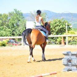 equitation au centre de vacances dans l'Hérault