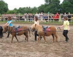 longues rênes poney