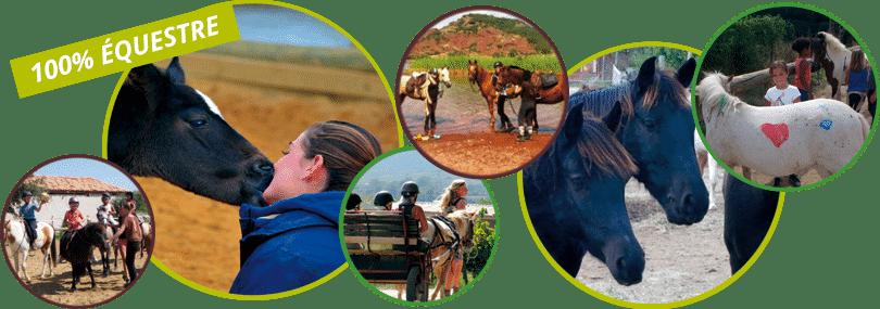 séjours équitation au centre équestre du Pouget