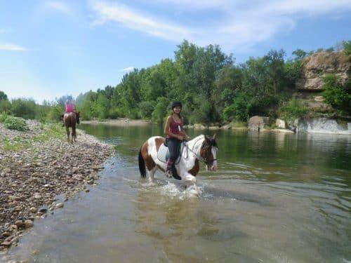 baignade cheval