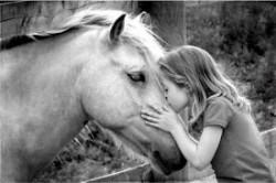 séjours équitation