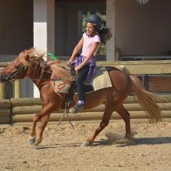 cours équitation Hérault