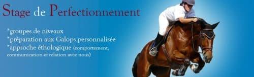 stage et séjour équitation