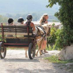 poney club à Gignac