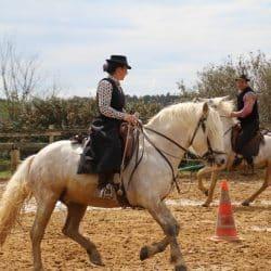 représentation cheval
