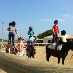 équilibre sur poney
