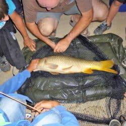 activité pêche pour Ados