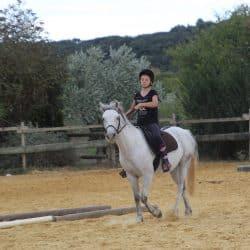 activité équitation Clermont l'Hérault