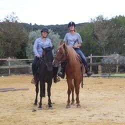 activité cheval Clos d'Alice