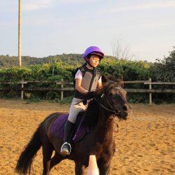 séjour equitation été Hérault