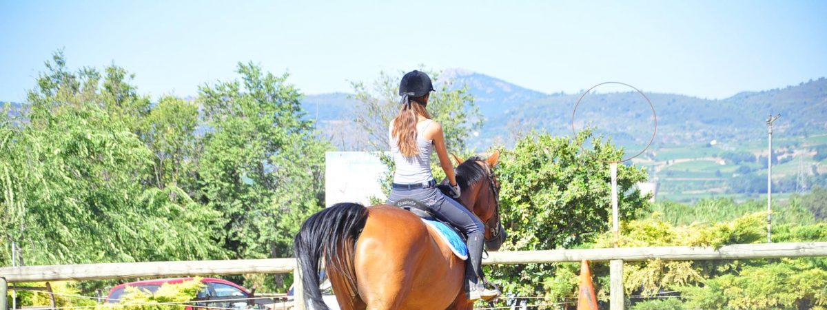 séjours équestres ados au Pouget