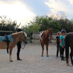 séjour poney à Gignac