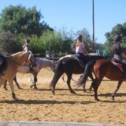 séance équitation
