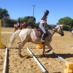 Séance équitation en carrière