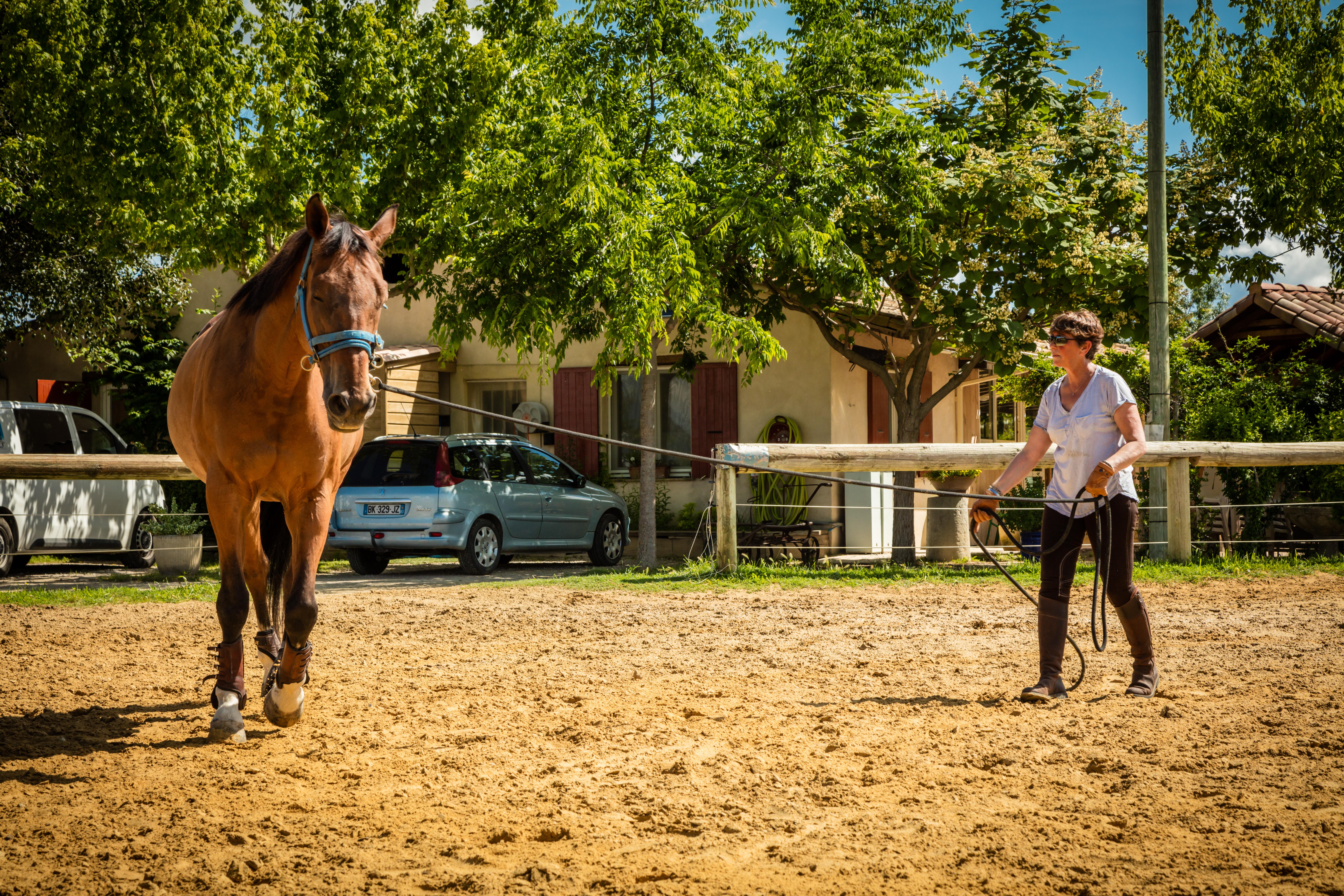Cours d'équitation au centre équestre Pouget