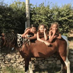 Séjour équestre enfants Hérault