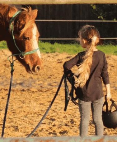 Séjour équestre découverte de l'équitation centre de vacances
